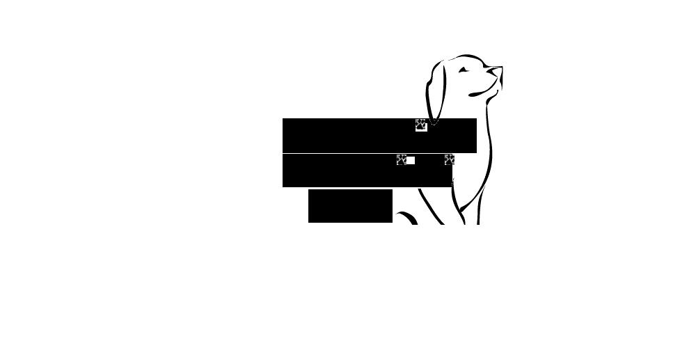 Logo Baratieri